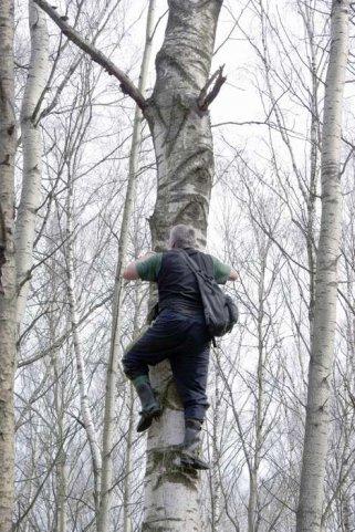Гаффы, или влезть на елку и задницу не ободрать - Маскировка